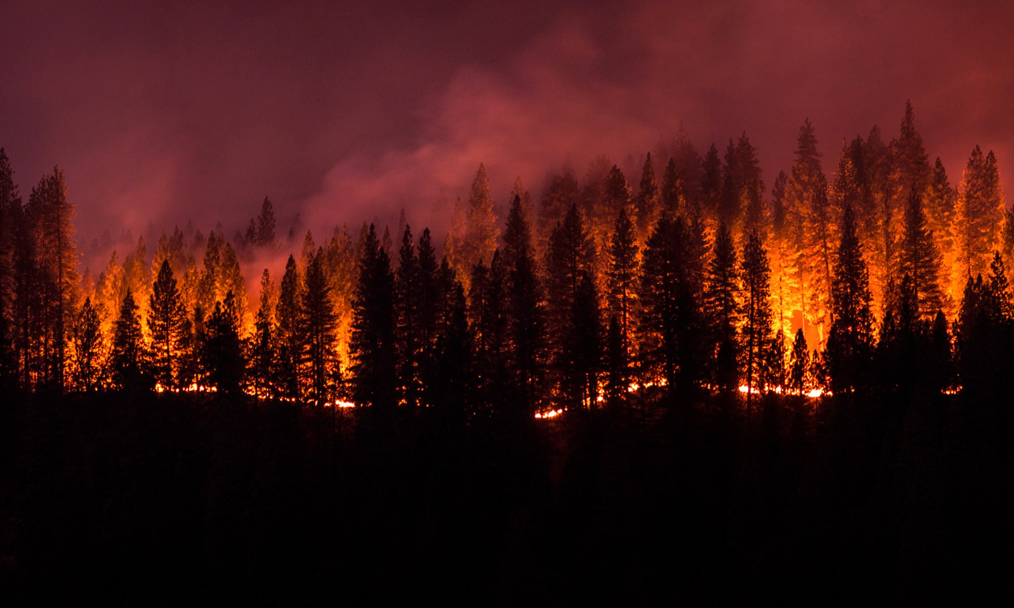 The Columbia Gorge is Burning; Here's What You Can Do
