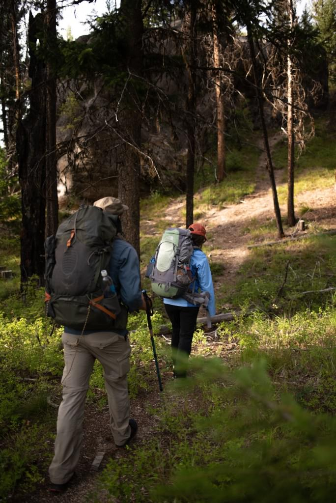 People backpacking through forest.