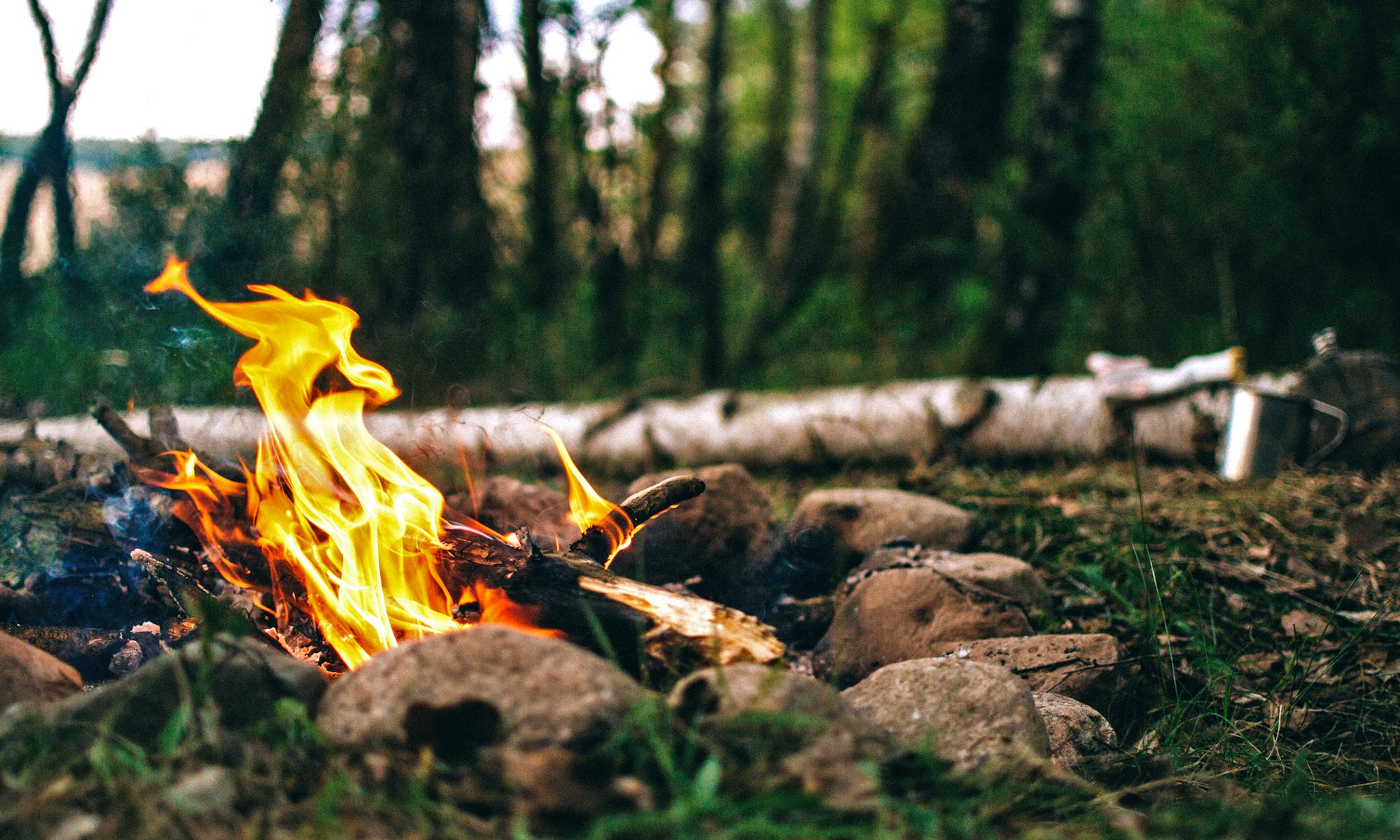 Four Types of Camp Fires You Can Build Outdoors