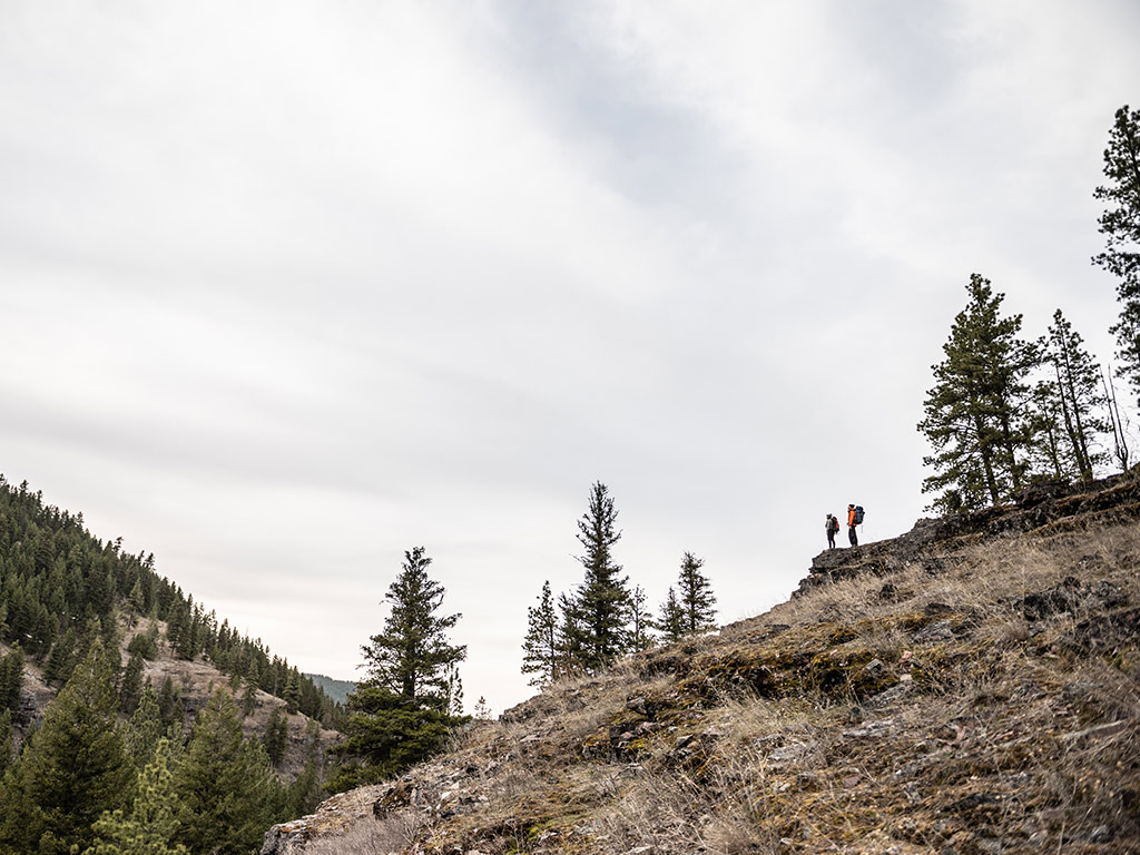 hikers on a hill in the wilderness