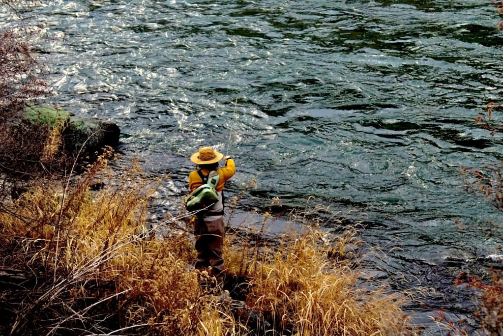 An angler casts a line out on the Deschutes river.